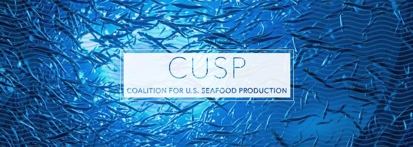 CUSP logo header